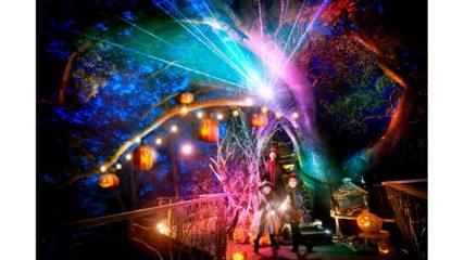 今年のハロウィンは星野リゾート リゾナーレ熱海で!『魔女の住む森のハロウィン』が開催
