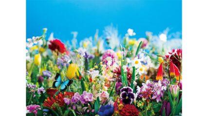 松坂屋美術館で開催「蜷川実花展 ー虚構と現実の間にー」
