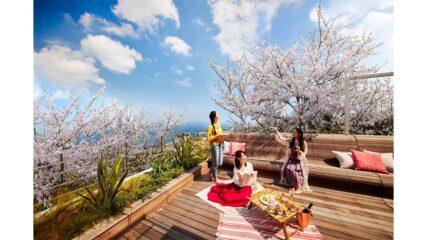 リゾナーレ熱海の宿泊プラン「海と桜のプライベートお花見ステイ」