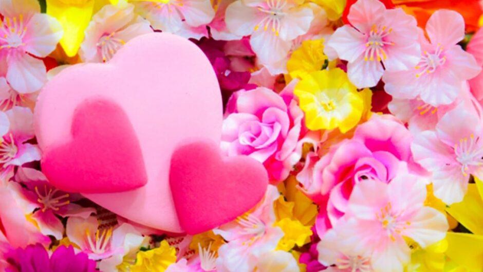 春のお花が見ごろ!「デンパークフラワーフェスティバル」