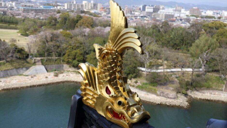「名古屋城金シャチ特別展覧」開催!刀剣乱舞とのコラボも実施