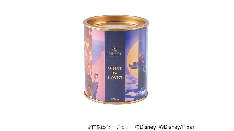 WHAT IS LOVE? ~輝くヒミツは、プリンセスの世界に。~