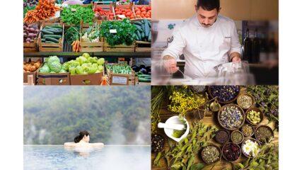 日本が誇る食や文化が集結するリゾート施設「VISON(ヴィソン)」