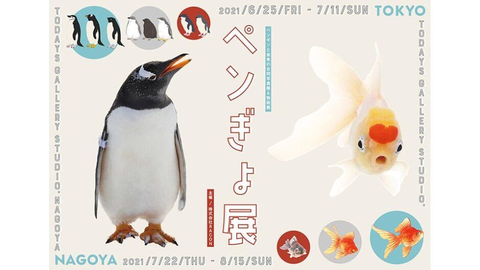ペンギンと金魚の祭典「ペンぎょ展 in 名古屋」