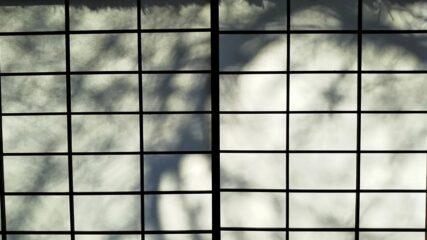 「水木しげる 魂の漫画展」岡崎市美術博物館で開催