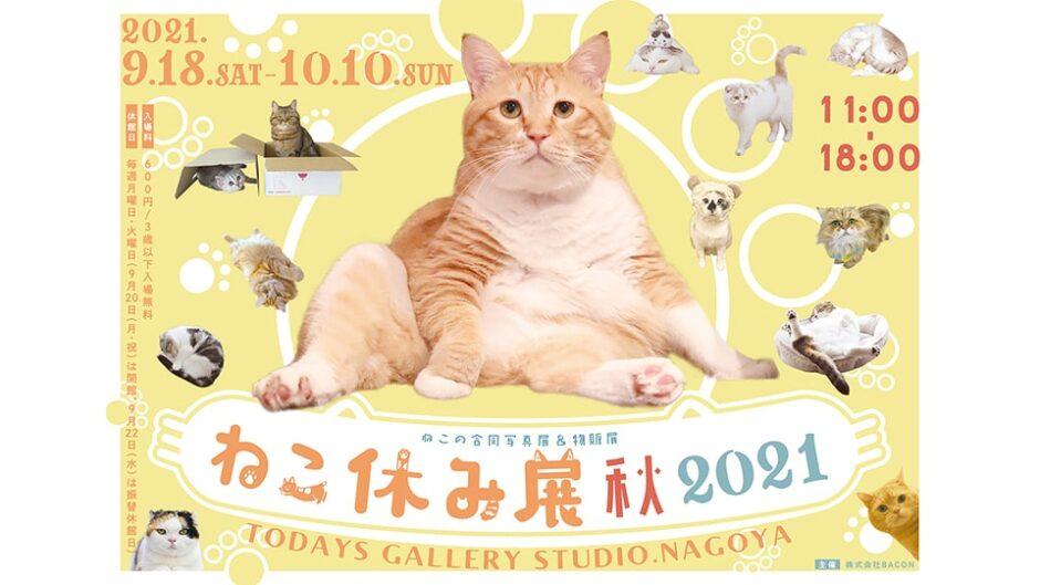 「ねこ休み展 秋 2021」猫の写真とグッズが名古屋に大集合!